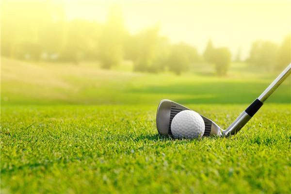 """为什么高尔夫常被定义为""""有钱人的运动""""?"""
